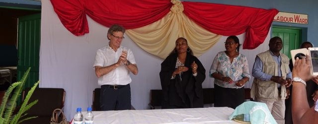 > > Zimbabwean artists partner Rotarians to raise $60 000 in an Art for Charity project